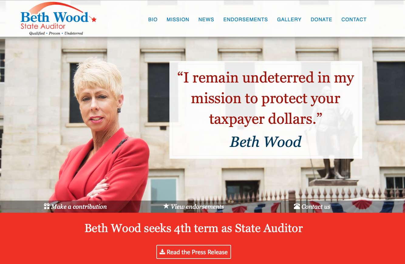 State Auditor's website comes in on budget